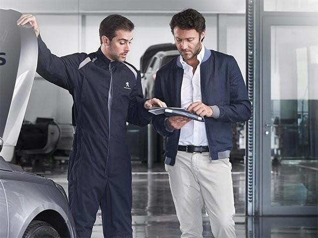 Peugeot 5008 Teleservices