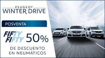 Promo neumáticos Winter Drive