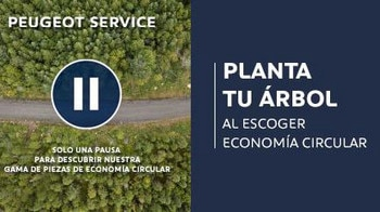 Planta un arbol - Posventa Peugeot