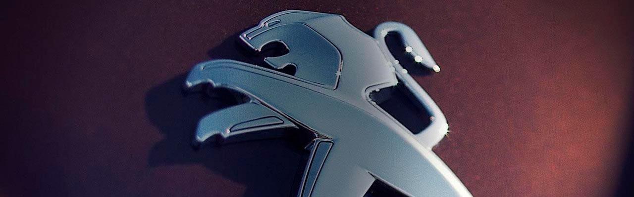 Universo Peugeot Logo León